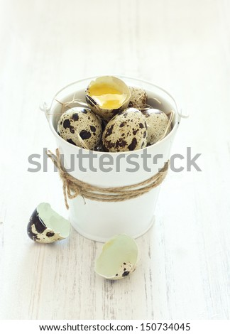 Quail eggs in a bucket - stock photo