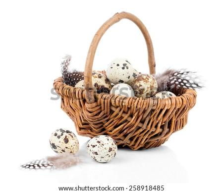 quail eggs in a wicker basket on white background - stock photo
