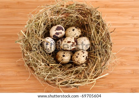quail eggs in hay on wooden surface - stock photo
