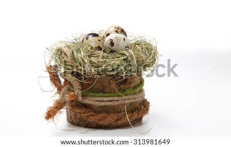 quail eggs in nest with willow branch