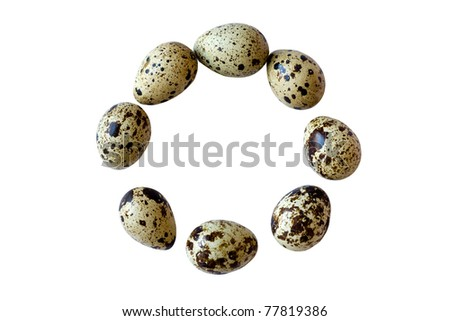 Quail eggs in the circle isolated on white background - stock photo