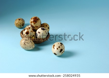 Quail eggs in the nest over blue background - stock photo