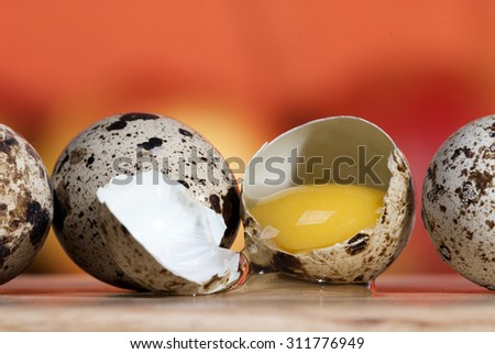 Quail eggs on a beautiful background closeup - stock photo
