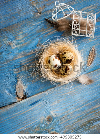 quail eggs on a blue wooden background