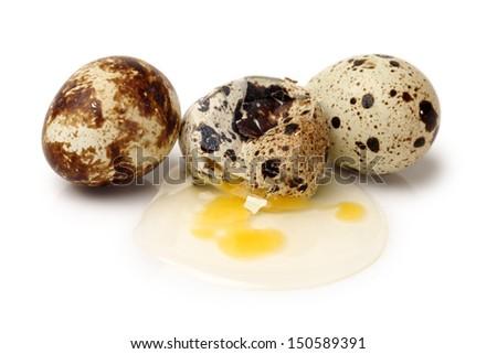 quail eggs on white background  - stock photo