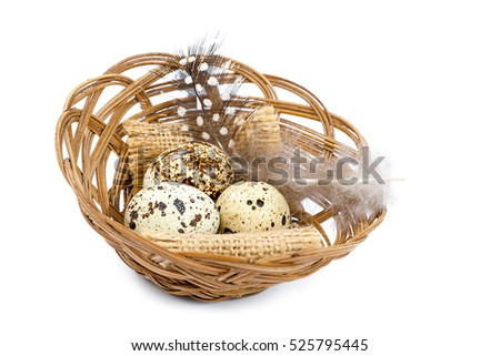 Quail eggs with feather in wooden wicker basket isolated on white background.