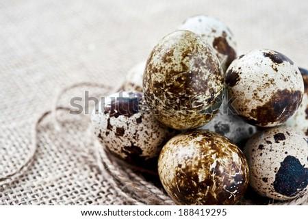 Quail eggs yolk in white porcelain bowl. Indoors closeup. - stock photo
