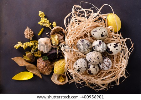 Quail nest with spotted eggs, dried plants on a wooden background - stock photo