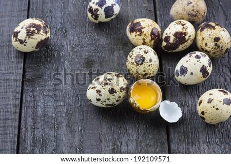 Quails Eggs - stock photo