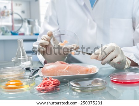 Quality control expert inspecting at food specimen in the laboratory - stock photo