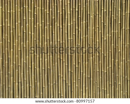 Quality natural slim bamboo texture - stock photo