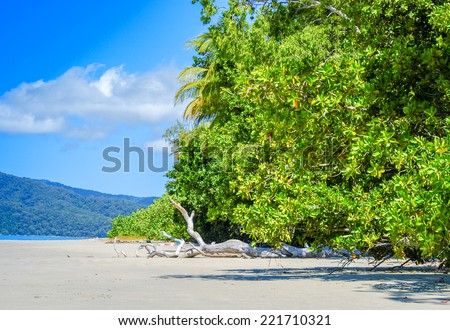 Queensland, Australia. Wonderful vegetation over ocean. - stock photo