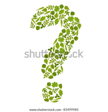 question mark from green leafs - stock photo