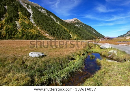 Quick stream of clear water flowing in the middle of the canyon.  Hillsides picturesque alpine valley covered with thick coniferous forest - stock photo