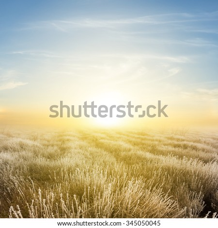 quiet frozen prairie at the early morning - stock photo
