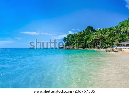 Quiet paradise beach with golden sand, azure water and palm trees, Surin beach, Patong area on Phuket Island, Thailand - stock photo