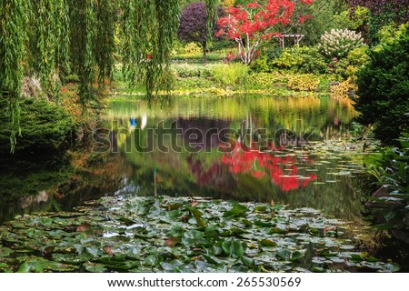Quiet pond, overgrown with lilies, among the weeping willows. Fantastic floral Butchart Gardens on Vancouver Island, Canada - stock photo