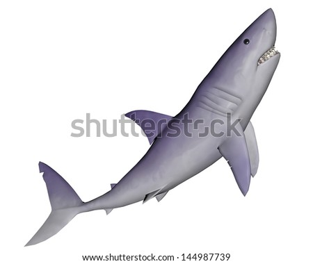 Quiet shark moving up in white background - stock photo