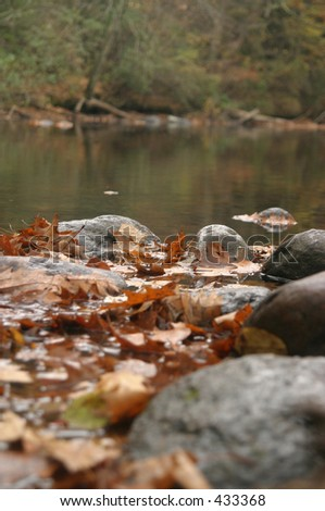 Quiet stream during autumn - stock photo