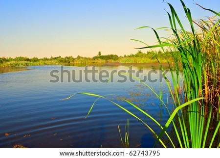 quiet summer river - stock photo
