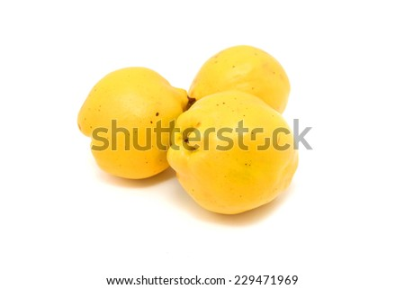 quince isolated on white - stock photo