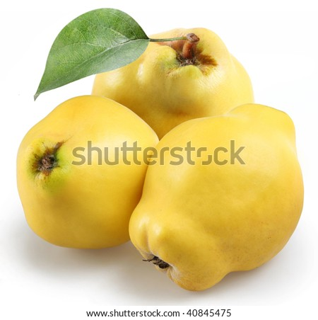 quince on a white background - stock photo