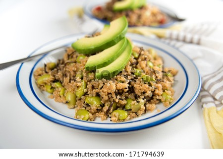 Quinoa Based Salad Topped with Slices of Avocado - stock photo