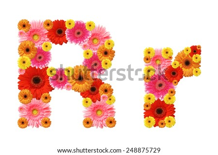 r, flower alphabet - stock photo