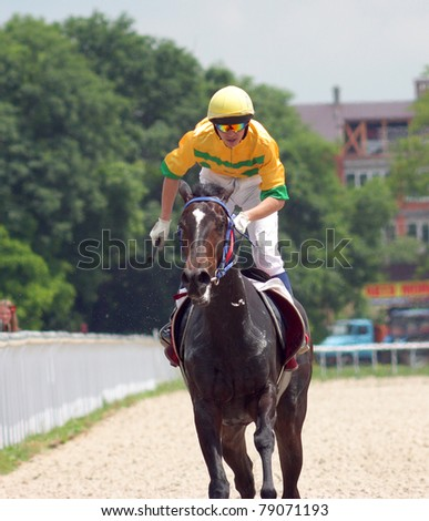 Race Horse and Jockey - Extreme Close Up.Hippodrome in Pyatigorsk,Caucasus.