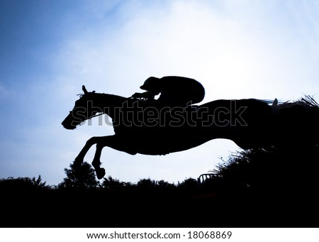 race horse jumping hurdle at speed photographed in silhouette - stock photo
