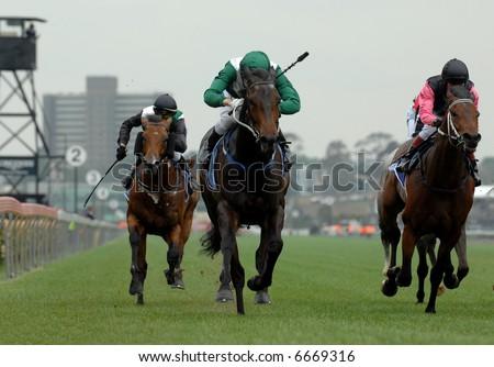 Race horses head on towards the finish - stock photo