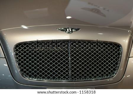 Radiator grill of luxury sportscar - stock photo