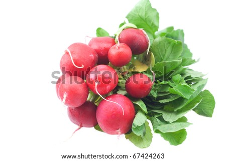 radish isolated on white - stock photo