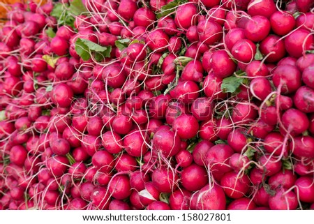 radishes bunched together at a farmers market