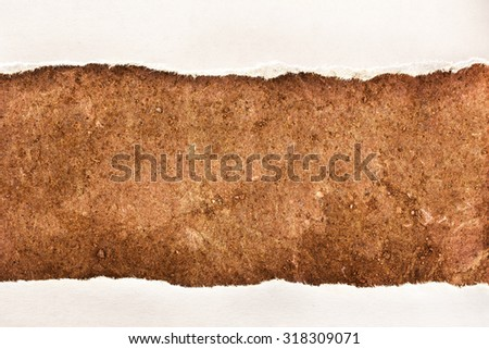 Ragged pieces of paper as background closeup - stock photo