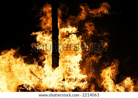 Raging Forest Fire - stock photo