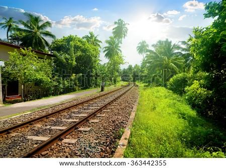 Railroad in Sri Lanka - stock photo