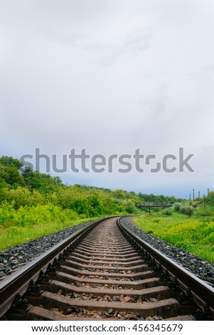 Railroad leading to the horizon in the forest