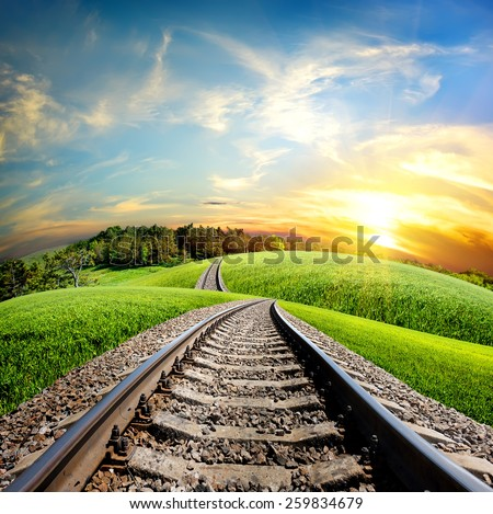 Railroad through the green field and forest - stock photo