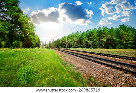 Railroad through the pine forest at sunny day - stock photo