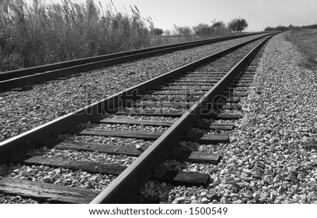 Railroad Tracks Curving into the Background