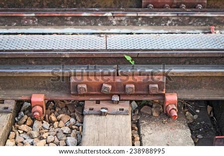 Railroad tracks, Steel Joints tracks. - stock photo