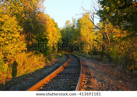 rails in the woods - stock photo