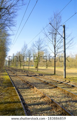 Railway and tram tracks along a forest with transmission lines above - stock photo