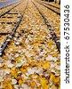 Railway covered by autumn foliage, Torino, Italy - stock photo