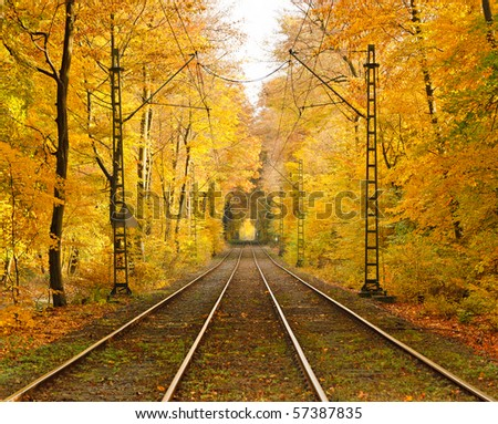 Railway in autumn forest - stock photo