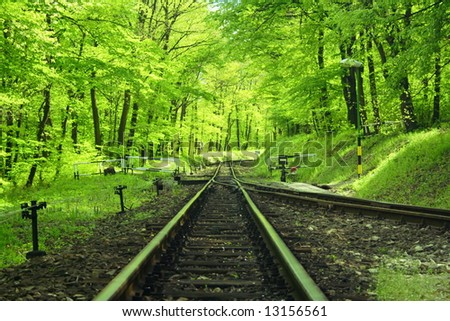 railway track in the forest - stock photo