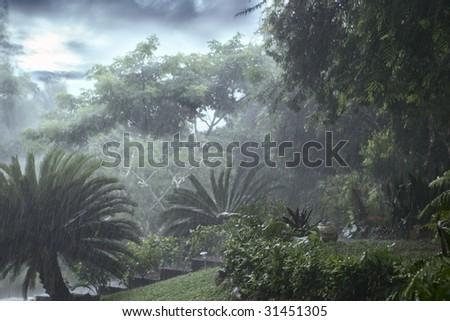 rain - stock photo