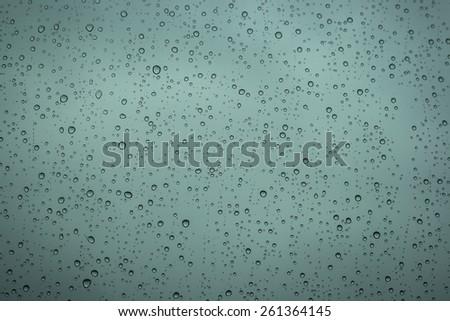 rain droplets in a window glass  - stock photo