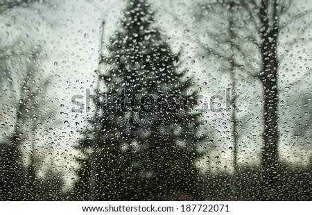 Rain drops on glass. - stock photo
